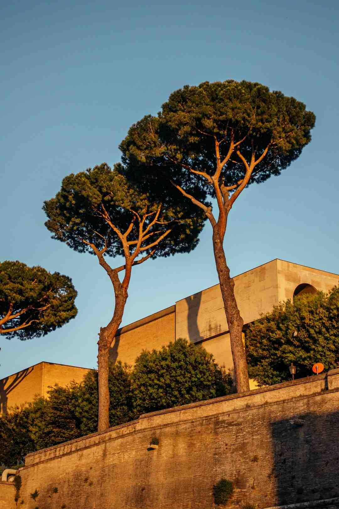 Come vestirsi per visitare Assisi?